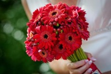 An alternative to a red rose bouquet - berries and gerberas