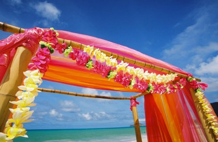 Wedding arch for a beach wedding