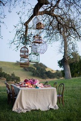 Outdoor reception with hanging birdcages