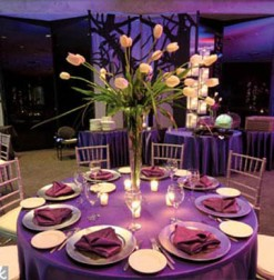 Purple and peach reception