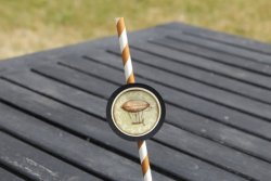 Paper straws, by TheShindiggityShoppe on etsy.com