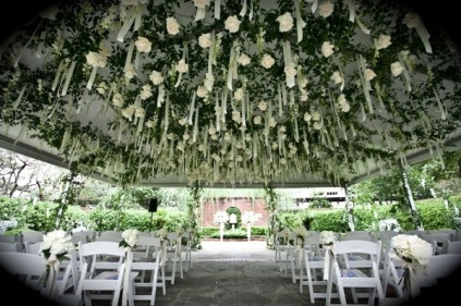 White roses hung with ribbon