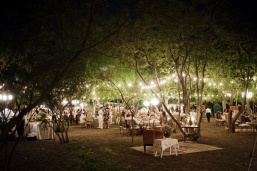Backyard wedding {via southernweddings.com}