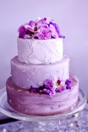 Radiant orchid wedding cake {via weddingsillustrated.net}