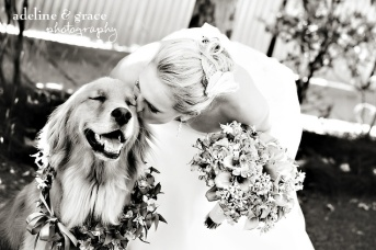 Get a photo with your dog {via adelineandgraceblog.com}