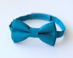 Pageboy's teal bow tie - www.etsy.com/shop/MeltMyHeartBoutique