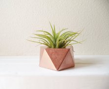 Rose-gold tiny planter table decor - www.etsy.com/shop/RedwoodStoneworks