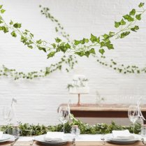 Decorative vines - https://www.etsy.com/nz/listing/619816089/decorative-vines-wedding-balloon-vines?ga_order=most_relevant&ga_search_type=all&ga_view_type=gallery&ga_search_query=wedding+reception+decor&ref=sc_gallery-3-10&plkey=88d6a74c0b71eb8dffffb2bae8a84285cc5852ac%3A619816089&pro=1