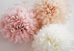 Tissue paper poms - https://www.etsy.com/nz/listing/173681573/7-tissue-poms-wedding-reception?ga_order=most_relevant&ga_search_type=all&ga_view_type=gallery&ga_search_query=wedding+reception+decorations&ref=sr_gallery-2-5&organic_search_click=1