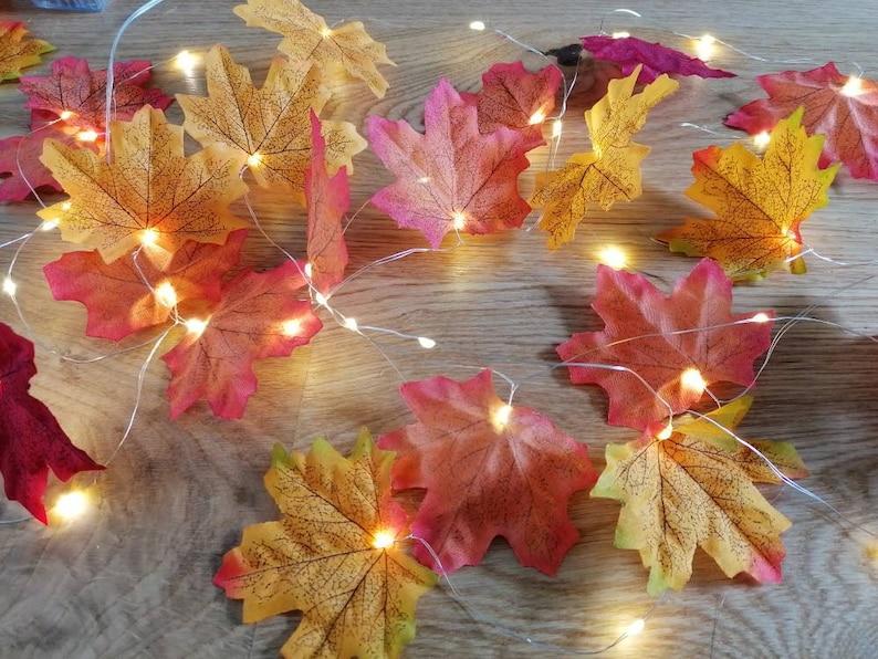 Autumn/Fall leaves lights